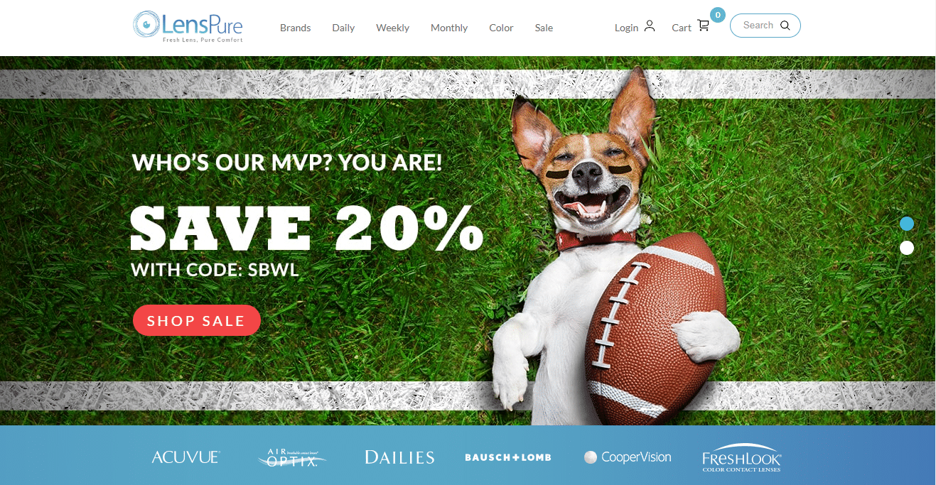 Art Direction on web banner showing puppy and football for puppy bowl.